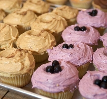Blueberry_cupcakes