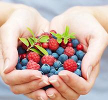 Jus-by-julie-berries