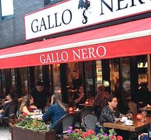 Gallo nero outside