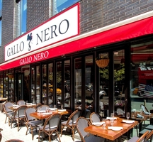 Gallo-nero-3-outdoor