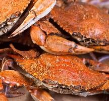 Delicious-crabs