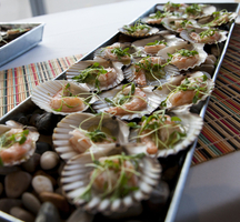 Spains_great_match-scallops