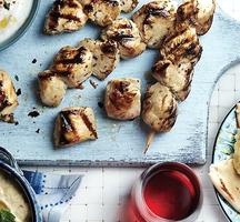 Grilled greek chicken meze platter1