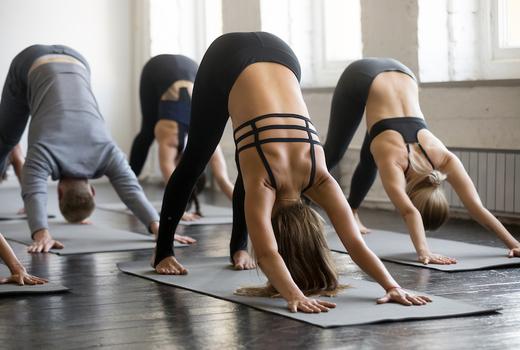 Dharma yoga downward dog