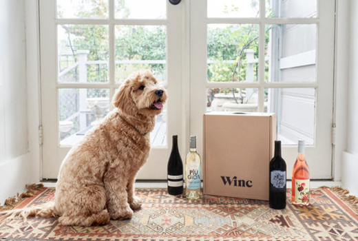 Winc wine dog
