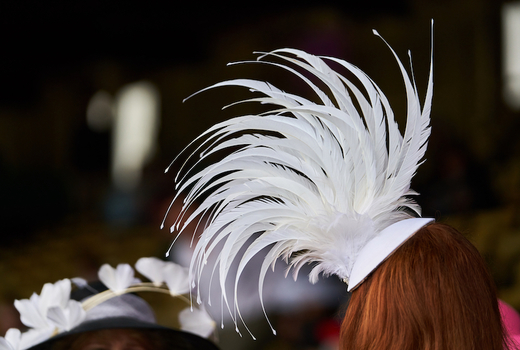 Village lantern kentucky derby hat feathers love