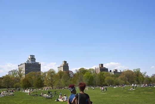 Blade bowl picnic park wow love