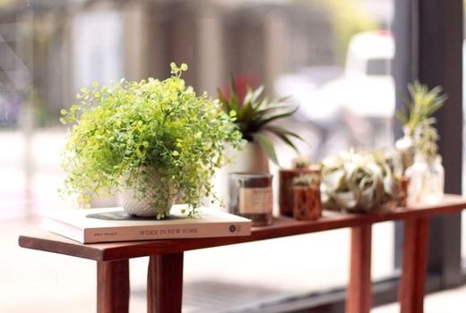 Salon wave nyc plants greenery