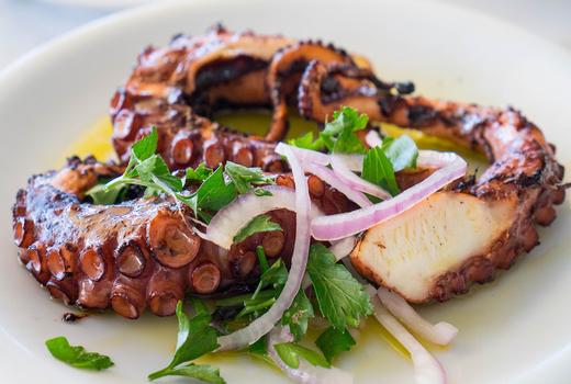 Eros food octopus fresh