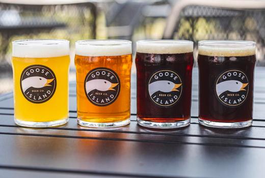 Beer tippler goose colors