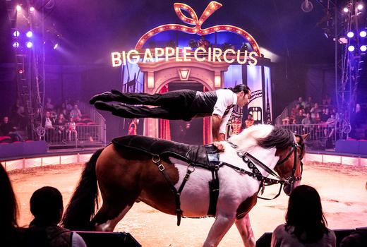 Big apple circus horse riding