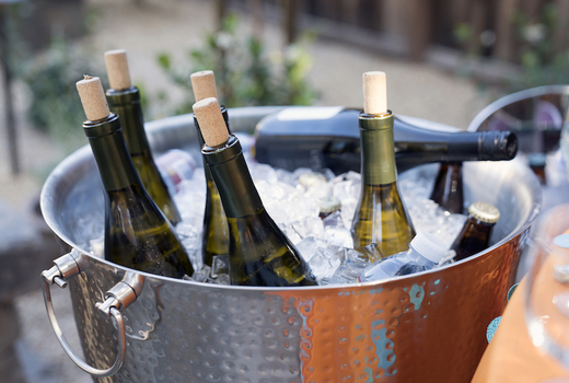 Unrooted wines bottles bucket