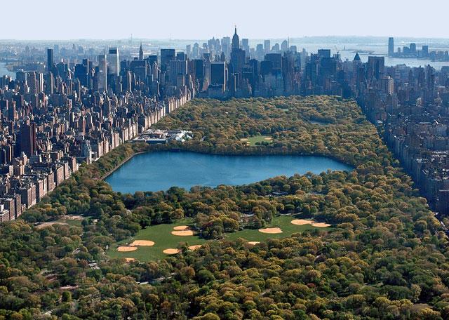 Central park picture
