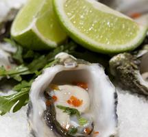 Oyster-tasty