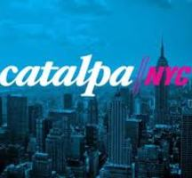 Catalpa-nyc