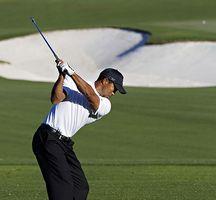 Golf-swinging-tiger