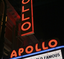 Apollo-nyc-amateur