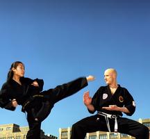 Martial-arts-kicker