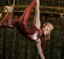 Circus-trapeze-2
