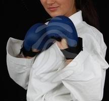Martial-arts-gloves