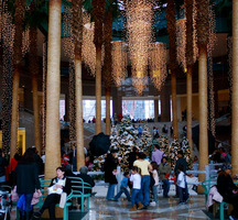 The Winter Garden Holiday Fest World Financial Center Winter Garden Events Pulsd Nyc