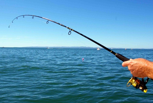22 for a half day byob fishing trip 44value or 34 for Fishing trips nyc