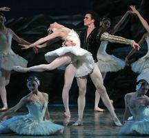 Swan-lake-opera