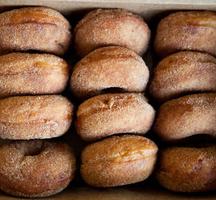 Carpe-donuts