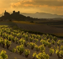 Spanish_wines_rioja
