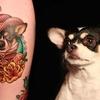 Tats 'N Tails: Adoption & Tattoo Party