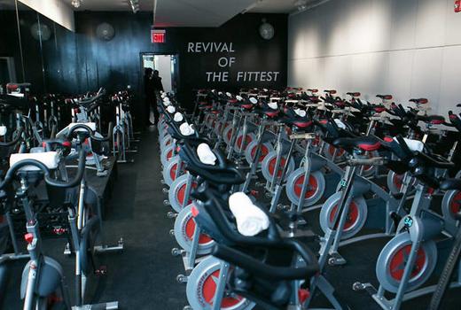 Revolve bikes