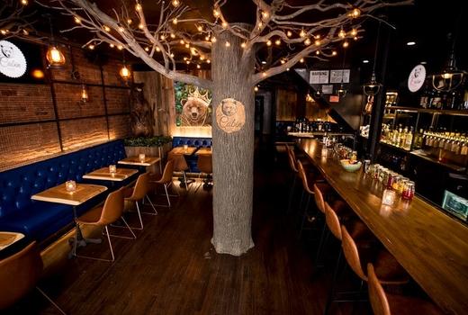 The cabin inside tree