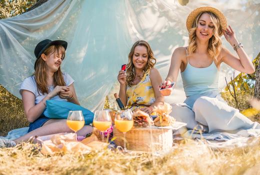 Bolw blade friends picnic fun
