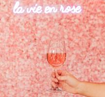 Rose terrace launch party la vie en rose