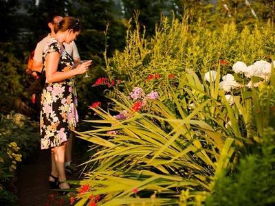 Twilight tuesdays botanical gardens