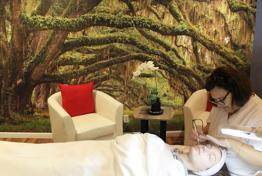 Organic elements inside room treatment