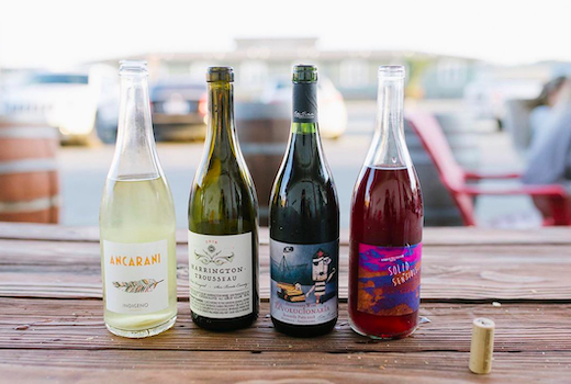 Unrooted wines bottle lineup