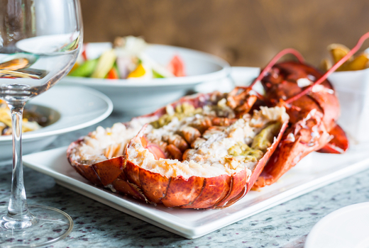 Moti mahal delux lobster wow